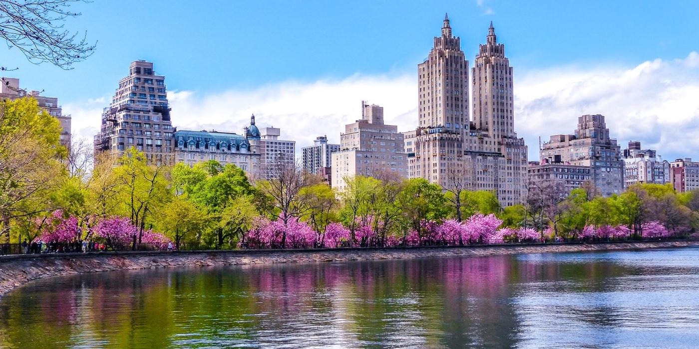 Festival Sakura Matsuri en el Jardín Botánico de BrooklynSi estás en Nueva York a principio de la primavera, no puedes perderte la floración de los cerezos en el Jardín Botánico de Brooklyn. Si te gusta ir de compras, la primavera es la mejor época para viajar a Nueva York ya que el número de turistas es algo menor y los precios son un poco más asequibles.