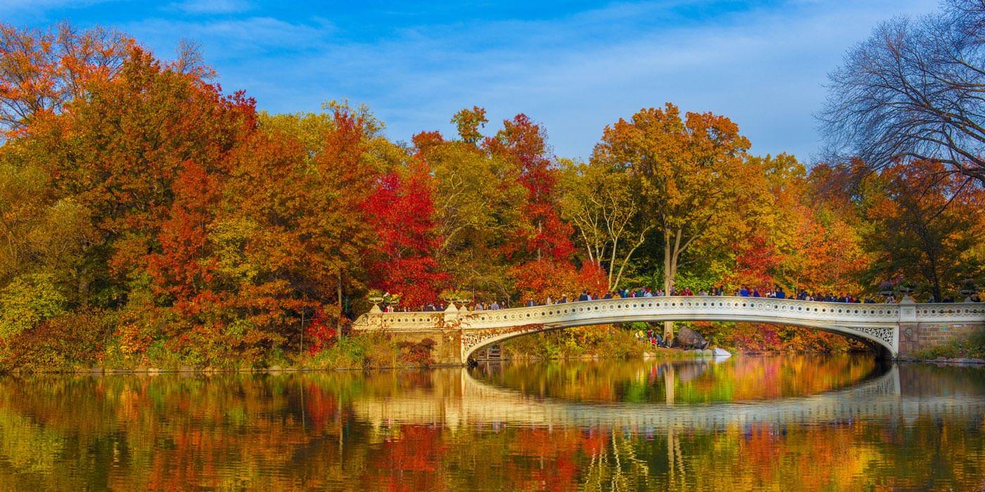 Qué hacer en Nueva York en otoñoEl principio del otoño es posiblemente la mejor época del año para viajar a Nueva York para aquellos que llevan mal las temperaturas extremas, además es una estación llena de eventos y en la que puedes conseguir viajar a Nueva York barato.